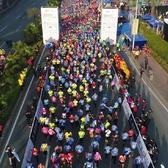 """2017年""""慕思杯""""厚街工业旅游半程马拉松"""