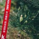 2018 柴古唐斯-括苍越野赛