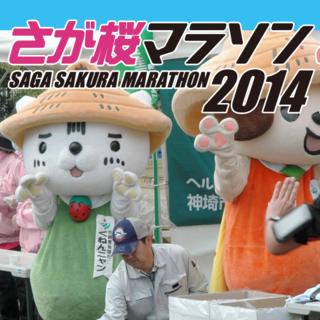2014佐贺樱花马拉松