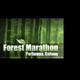 爱尔兰波塔姆纳森林马拉松