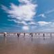 """全国沙滩(海岛)露营大会暨岱山听海节""""海岛铁人三项赛"""""""