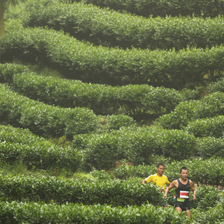 2015可口可乐•杭州四季越野(夏季赛)