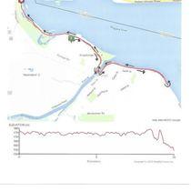 10k-map-my-run
