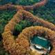 南京紫金山城市山地马拉松