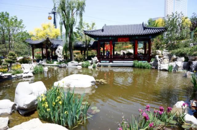 2017 花园半程马拉松(中国)系列赛 青岛世博园站