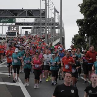 2015 奥克兰马拉松