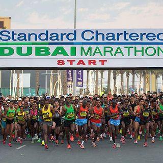 2014 渣打迪拜马拉松