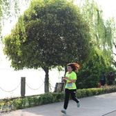 2016年中国南北湖半程马拉松赛