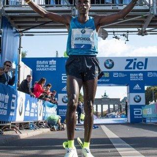 2015柏林马拉松