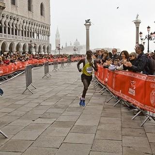 2014 威尼斯马拉松
