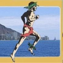 2013 火奴鲁鲁马拉松  Honolulu Marathon