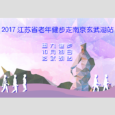 江苏省老年健步走南京玄武湖站