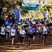 五大野生动物马拉松官方照片