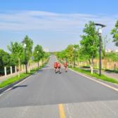 """""""福年杯""""跨年爱心公益骑跑两项活动"""