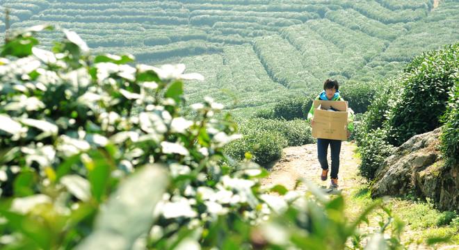 杭州一百,志愿风采