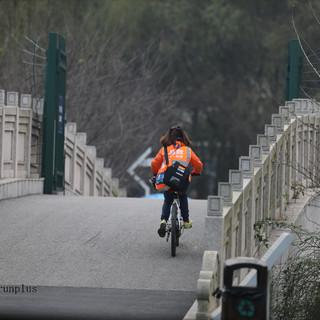 探索无限 关爱地球 2015国家地理经典影像盛宴主题路跑