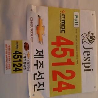 2014 济州国际和平马拉松赛