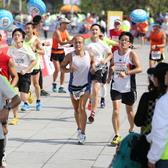 2014年广州马拉松摄影师:潘文峰 全程马拉松终点(12:40—12:59)
