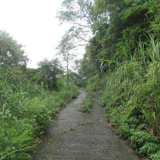 2016 野兽山径