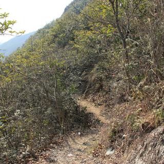 Salomon城市越野跑- 台州站2015第二期 九峰群山迎春跑15K