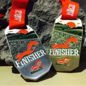 2015年奖牌