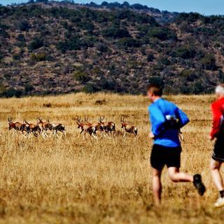 2015 五大野生动物马拉松