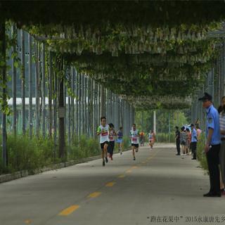 """2015""""跑在花果中""""2015永康唐先乡村马拉松"""