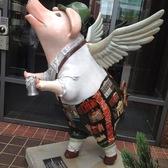 辛辛那提市的猪猪们