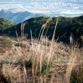狮子山到飞泉寺流动拍摄2——需要原片大图的亲们请将照片编号(6348-6728)发我邮箱1520185911@qq.com