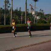 厦门Ironman70.3 跑步 15:19-15:53(大约2km、9km、16km处,333张)【照片按EXIF时间划分;比实际时间早8分钟】