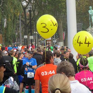 2015 法兰克福马拉松