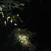 cp2的夜景