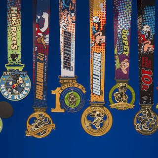 2016 华特迪士尼乐园马拉松