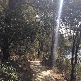 野行万里 逐日而奔 昆百大·野鸭湖酷搏健身春季森林越野酷跑