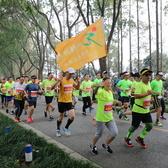 2017尚湖马拉松5.5k(4)