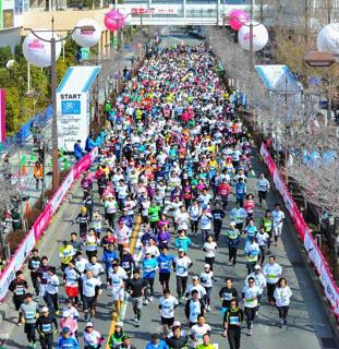 2015名古屋城市马拉松