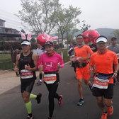 南京江宁春牛首马拉松