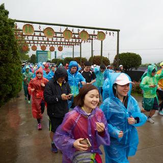 2016 抹茶马拉松