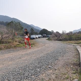 2016年中国·奉化海峡两岸马拉松赛
