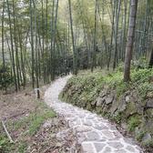 mogan trail