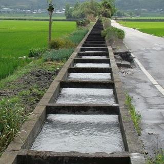 2015 池上稻浪马拉松