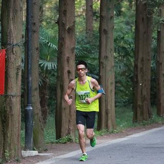 2015崇明森林半程马拉松