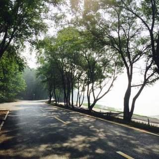 2015沈阳棋盘山秀湖日落半程山地马拉松赛