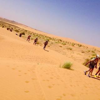 2016 苏丹撒哈拉沙漠马拉松