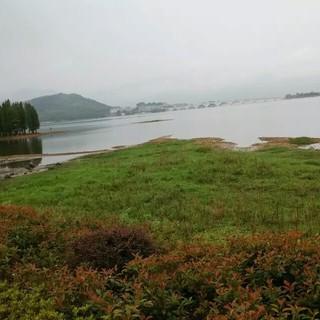 翠湖香堤杯2015 余姚四明湖半程马拉松赛