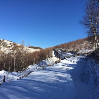 2015 野雪跑