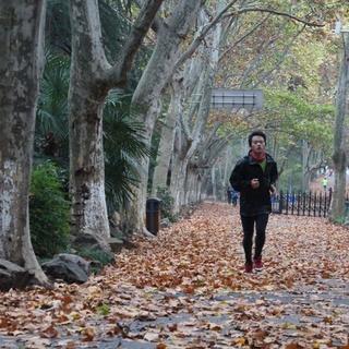 2013 南京中山民间马拉松