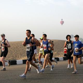 2015 埃及人马拉松