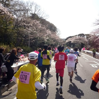 2014静冈平樱马拉松
