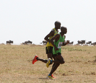 2015 马赛马拉马拉松